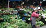 Đời người ở chợ rau đêm...
