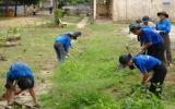Năm 2010: Thanh niên hành động vì môi trường