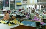 Để hàng hóa Việt chiếm lĩnh thị trường nội địa:Chính sách thuế cần phù hợp hơn!