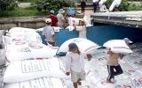 Đầu năm 2010, giá gạo xuất khẩu tăng mạnh