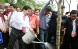 Chủ tịch nước trồng cây tri ân Quốc tổ Hùng Vương
