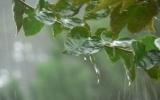 Hoàn lưu bão số 2 gây mưa to ở Bắc bộ