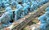 7 tháng qua, nông nghiệp xuất siêu 2,6 tỷ USD