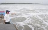 Vedan chấp nhận đền bù cho nông dân Đồng Nai gần 120 tỷ đồng