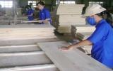 Xuất khẩu gỗ sẽ gặp khó?