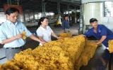 Công ty CP cao su Phước Hòa: Một thương hiệu lớn của ngành cao su Việt Nam