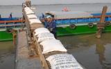 Thời cơ vàng cho xuất khẩu gạo