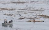 Thoát chết kỳ diệu dù bị sóng thần cuốn ra biển