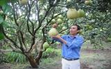Tạo đà cho thanh niên nông thôn phát triển kinh tế