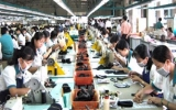 Da giày Việt Nam trước cơ hội mới