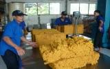 Công ty Cổ phần Cao su Phước Hòa: Vững bước vượt qua khó khăn