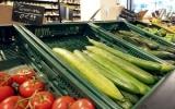 Hơn 300 triệu USD hỗ trợ thiệt hại do khuẩn E.coli
