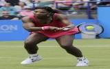 Serena Williams bị loại tại vòng hai giải Eastbourne International