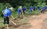 Thanh niên tình nguyện vì an sinh xã hội