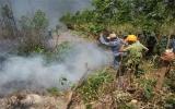 Phú Yên: Cháy lớn thiêu rụi hàng trăm ha rừng trồng