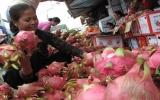 6 nước được xuất hàng hóa vào Việt Nam