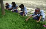Đoàn trường THPT Huỳnh Văn Nghệ: Hướng đến trường học thân thiện