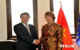 Vietnam shows responsibility, activeness in ASEAN-EU ties