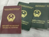 Vietnamese e-passports set to be issued from August