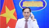 越南外交部长裴青山与塞尔维亚外交部长尼古拉·谢拉科维奇通电话