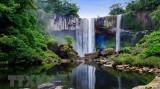 越南主山和昆何农正式列为世界生物圈保护区