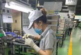 Doanh nghiệp chủ động kế hoạch phục hồi sản xuất