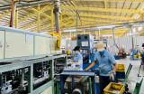 Enterprises put long-term faith in Binh Duong